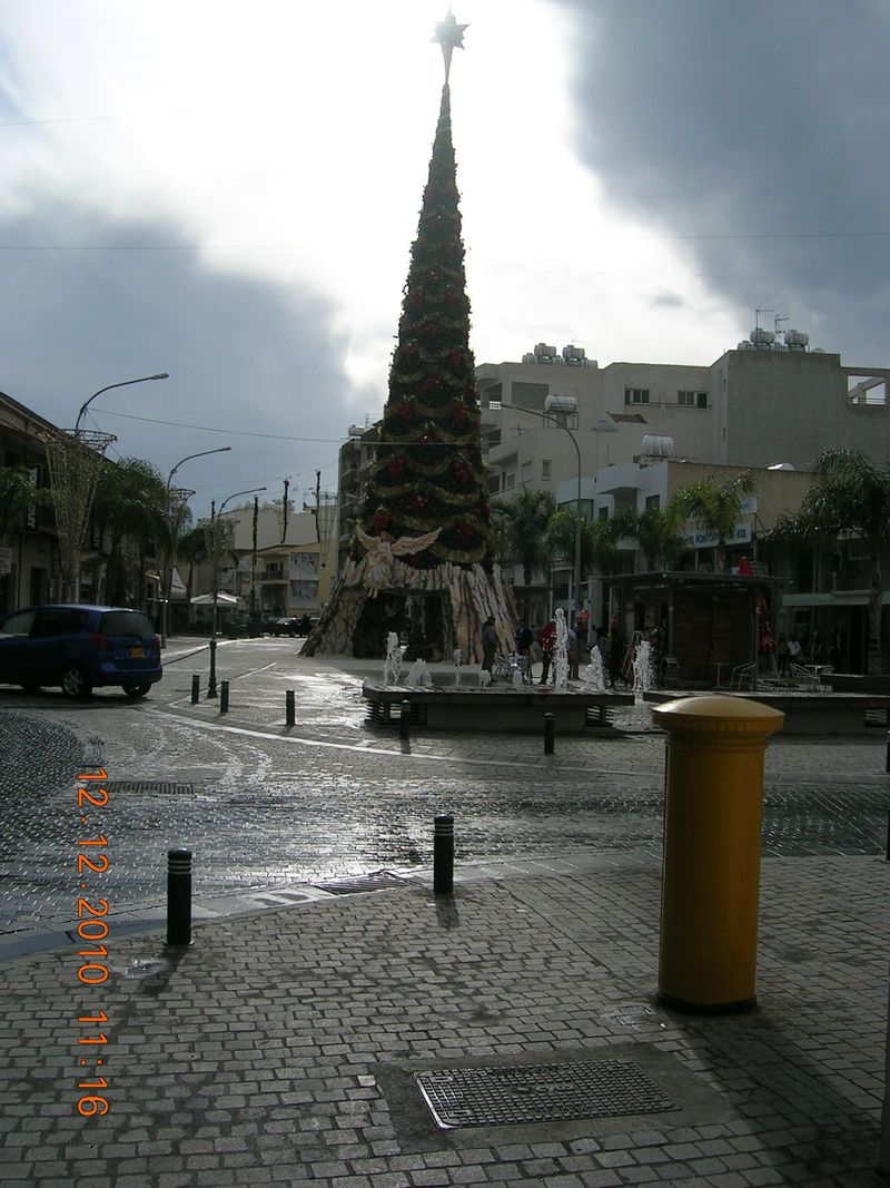 Christmas-tree-2010-1