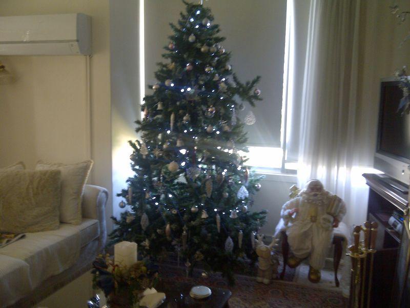 Christmas-decorations-2011 009