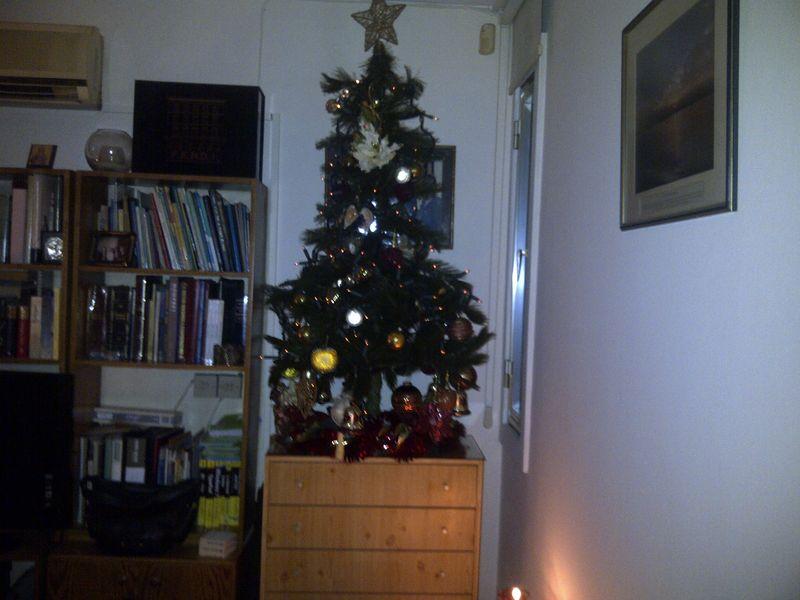 Christmas-decorations-2011 013
