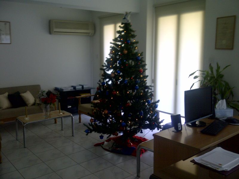 Christmas-decorations-2011 001