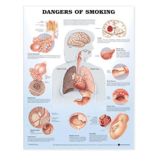 ACC_Smoking
