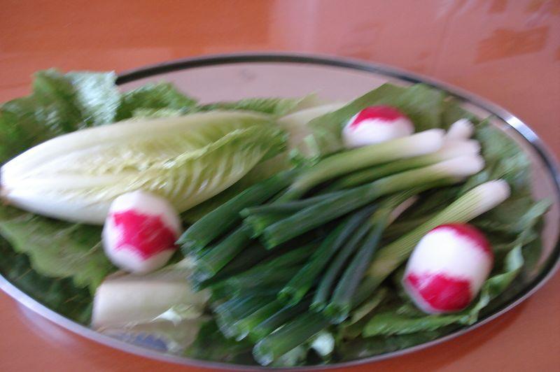 lettuce, fresh spring onions, radishes