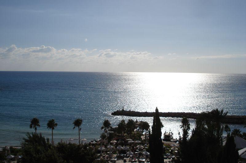 Coral Bay 06