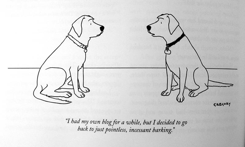 Dog's blog