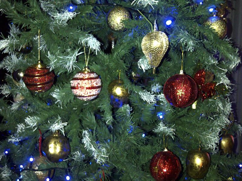 Christmas 2014 002